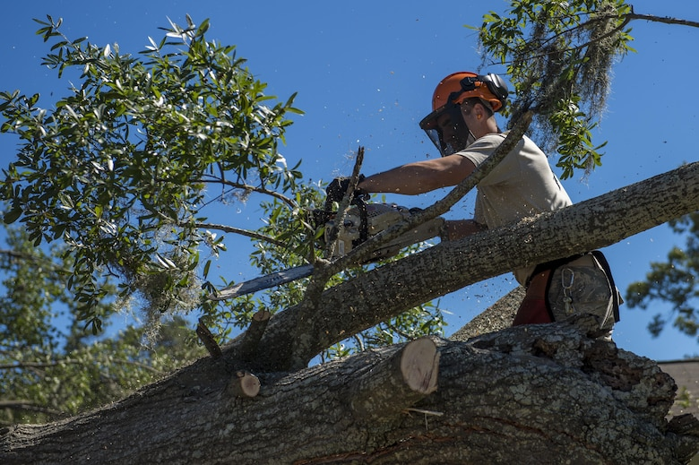 U.S. Air Force Senior Airman Jesse Steinberg, heavy equipment operators with the 628th Civil Engineer Squadron, removes a fallen tree after  Hurricane Mathew swept through Hunley Park-Air Base housing, S.C., Oct. 9, 2016.   All non-essential personnel evacuated the area, but returned after disaster response coordinators assessed damage and verified a safe operating environment.