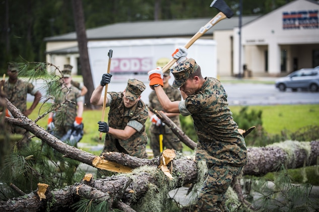 Marines chop a fallen tree at a main road aboard Marine Corps Air Station Beaufort Oct. 8. Marines and sailors with MCAS Beaufort worked to return the air station and Laurel Bay to normal operations.They removed debris and cleaned up main access roads to establish infrastructure after Hurricane Matthew.