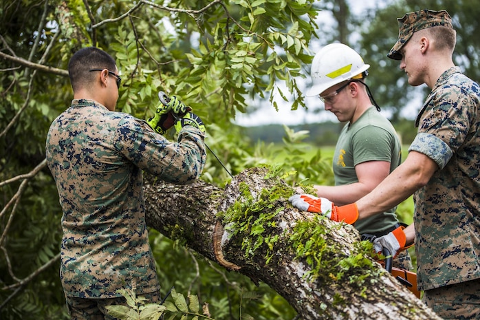 Marines remove a tree from a main road aboard Marine Corps Air Station Beaufort Oct. 8. Marines and sailors with MCAS Beaufort worked to return the air station and Laurel Bay to normal operations. They removed debris and cleaned up main access roads to establish infrastructure after Hurricane Matthew.