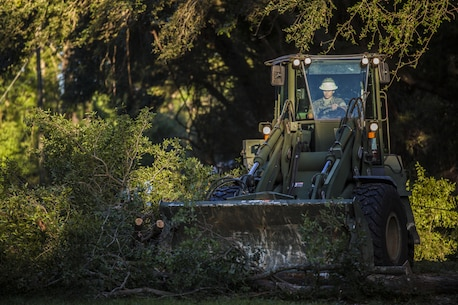A Marine uses heavy equipment to remove a tree on a road aboard Marine Corps Air Station Beaufort Oct. 9. Marines and sailors with MCAS Beaufort continued to work to remove debris and establish infrastructure aboard the air station and Laurel Bay after Hurricane Matthew.