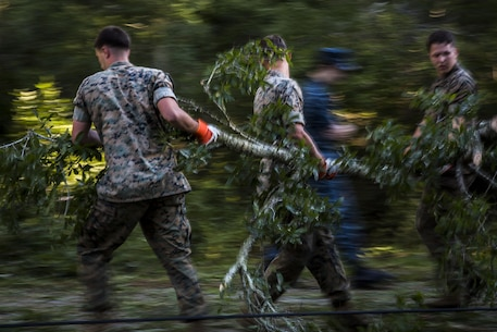 Marines remove a tree from a road aboard Marine Corps Air Station Beaufort Oct. 9. Marines and sailors with MCAS Beaufort continued to work to remove debris and establish infrastructure aboard the air station and Laurel Bay after Hurricane Matthew.