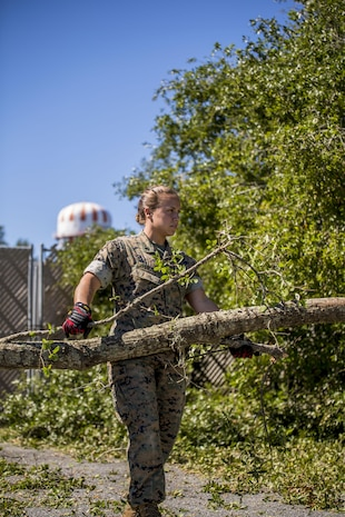 Cpl. Olivia Ortiz removes part of a fallen tree from a parking lot aboard Marine Corps Air Station Beaufort Oct. 9. Marines and sailors with MCAS Beaufort continued to work to remove debris and establish infrastructure aboard the air station and Laurel Bay after Hurricane Matthew. Ortiz is a photography chief with Combat Camera, Headquarters and Headquarters Squadron.