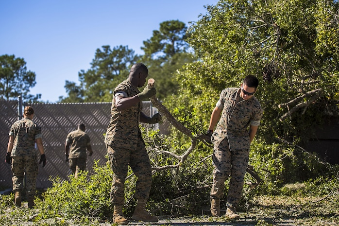 Marines clear a tree from a parking lot aboard Marine Corps Air Station Beaufort Oct. 9. Marines and sailors with MCAS Beaufort continued to work to remove debris and establish infrastructure aboard the air station and Laurel Bay after Hurricane Matthew. The Marines are with Headquarters and Headquarters Squadron.