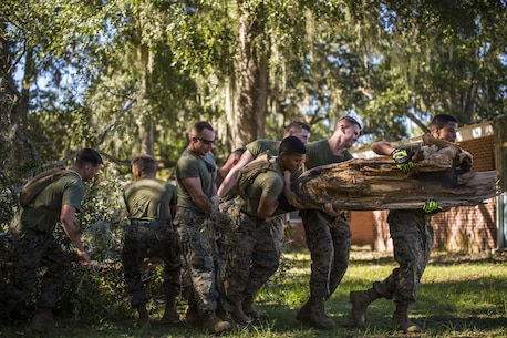 Marines remove a fallen tree from a backyard aboard Laure Bay Oct. 9. Marines and sailors with Marine Corps Air Station Beaufort continued to work to remove debris and establish infrastructure aboard the air station and Laurel Bay after Hurricane Matthew.