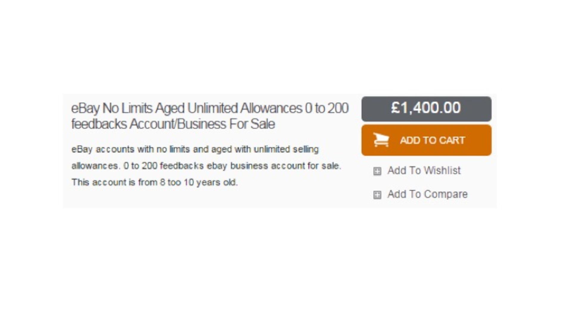 Figure 13.8 eBay Accounts for Sale