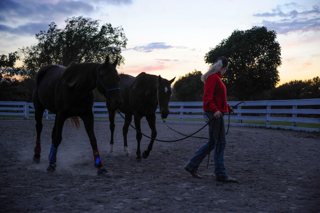 Airman 1st Class Lauren Nolan, 22nd Logistics Readiness Squadron materials management journeyman, leads her horses, Tiz Sunshine and Shoobie, Oct. 13, 2016, in Wichita, Kan. Tiz, 4 years old, and Shoobie, 6 years old, are both off-the-track thoroughbreds. (U.S. Air Force photo/ Airman 1st Class Jenna K. Caldwell)