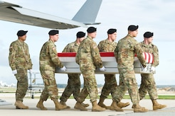 A U.S. Army carry team transfers the remains of Army Sgt. Douglas J. Riney, of Fairview, Ill., during a dignified transfer Oct. 21, 2016, at Dover Air Force Base, Del. Riney was assigned to Support Squadron, 3rd Cavalry Regiment, 3rd Cavalry Division, Fort Hood, Texas. (U.S. Air Force photo by Roland Balik)