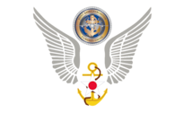 Wings from the 628th Air Base Wing logo with the Joint Base Charleston logo above.