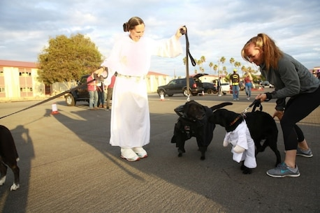 """The force was with Col. Roberta Shea, commanding officer, I Marine Expeditionary Force Headquarters Group and her pooches as she and other Marines celebrated """"Trunk or Treat"""" at Marine Corps Base Camp Pendleton, Calif., Oct. 28, 2016. The event included trick or treating, games, a costume contest, and a free movie showing. (U.S. Marine Corps photo by Pfc. Robert Bliss)"""