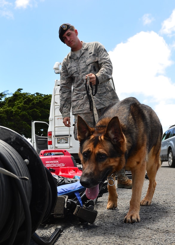 Senior Airman Joseph Drago, 647th Security Forces Squadron military working dog handler, and Dollar, 647th Security Forces Squadron military working dog, conduct an inspection of broadcast equipment on Joint Base Pearl Harbor-Hickam, Hawaii, Aug. 31, 2016. President Barack Obama was in Hawaii to speak at the Pacific Island Conference of Leaders and the International Union for Conservation of Nature World Conservation Congress. (U.S. Air Force Photo by Tech. Sgt. Aaron Oelrich/Released)