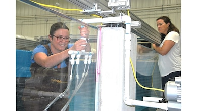 San Francisco District's Cynthia Fowler adjusts the air bubbles' curtain at the Engineer Research and Development Center's 33,000 gallon fish flume for invasive and native species research, as her adviser, Environment Laboratory's Research Ecologist Dr. Christa Woodley, observes. As one of eight district researchers and scientists selected for ERDC University's inaugural class, Fowler is participating in a six month collaborative research project at the Vicksburg, Mississippi, campus. As part of her master's degree program, she is studying the effects of hydraulic hopper dredging on all fishes with EL Advisers Dr. David Smith and Woodley.