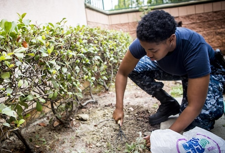 U.S. Navy Interior Communications Electrician  2nd Class Dominique Ferbos, with USS America (LHA 6), works in a garden during a volunteer event for the United States Veterans Initiative, a nonprofit organization that helps homeless veterans, Sept. 2, 2016, in Long Beach, Calif.  Marines, Sailors and Coast Guardsmen, visited the facility where hundreds of homeless veterans live and receive assistance and care. The visit was one of many community service projects that took place during the first Los Angeles Fleet Week. (U.S. Marine Corps photo by Sgt. Rick Hurtado)