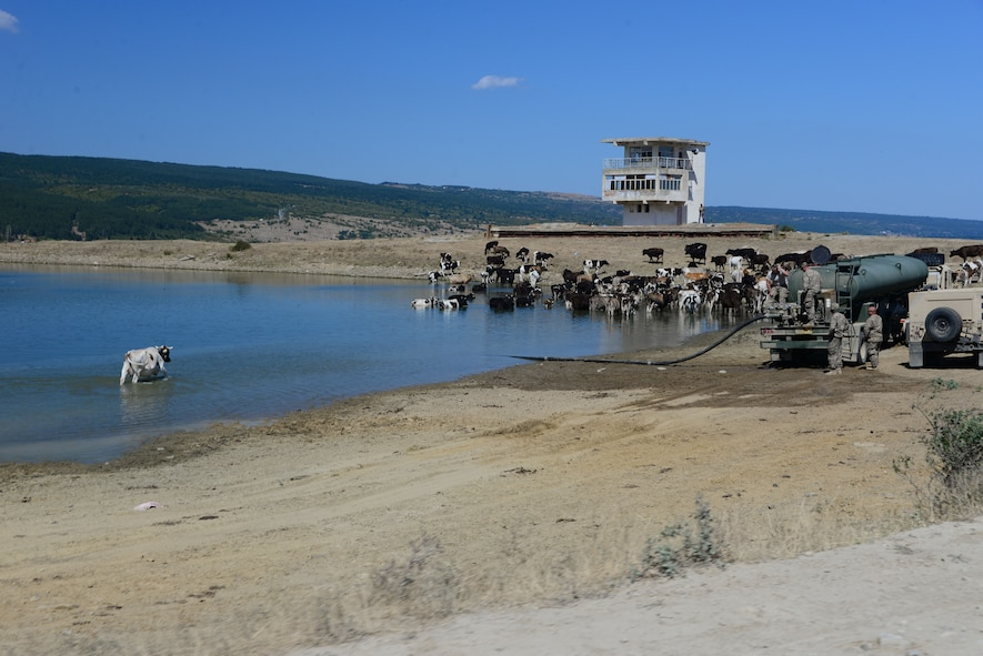 Soldiers from the 194th Engineer Brigade, Tennessee Army National Guard, fill water trucks from a holding pond while free range cattle bathe Aug. 16, 2016, at Novo Selo Training Area, Bulgaria.  Local cattle and sheep herders regularly herd thier animals across NSTA.  Tennessee National Guard Soldiers and Airmen were on rotations to complete thier portions of projects as part of Operation Resolute Castle 16, an ongoing operation of military construction to build up Eastern European base infrastructure and help strengthen ties between Tennessee's state partnership with Bulgaria. (U.S. Air National Guard photo by Master Sgt. Kendra M. Owenby, 134 ARW Public Affairs)