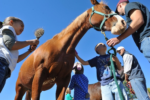 Children groom horses during an Equine Camp on Grand Forks Air Force Base, N.D. Sept. 17, 2016. The Grand Forks AFB Exceptional Family Member Program sponsored the camp which supported development in self-esteem, self-confidence and team building by encouraging children to interact with horses through different activities. (U.S. Air Force photo by Airman 1st Class Elijaih Tiggs)