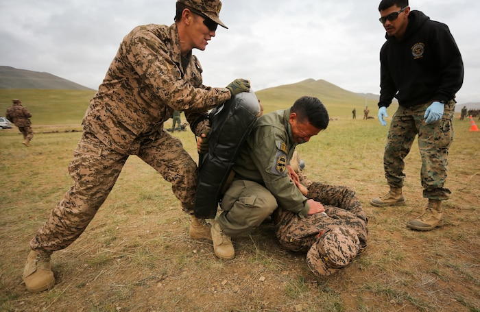 A Mongolian Armed Forces soldier executes a mechanical advantage control holds technique after being sprayed with oleoresin capsicum during Non-Lethal Weapons Executive Seminar (NOLES) 2016 at the Five Hills Training Area, Mongolia, Sept. 17, 2016. Mongolian soldiers and National Police were exposed to oleoresin capsicum spray and had to complete a five-level circuit course. Non-lethal weapons are designed to incapacitate equipment and personnel while minimizing fatalities and permanent injury to personnel, and undesired collateral damage to property.