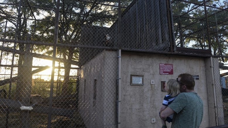 A father and son watch a monkey in its enclosure at the annual Zoo After Hours event at Alameda Park Zoo in Alamogordo, N.M. on Sept. 24, 2016. The Alameda Park Zoo has dozens of enclosures that house a variety of animals from deer to lemurs. (U.S. Air Force photo by Airman 1st Class Alexis P. Docherty)