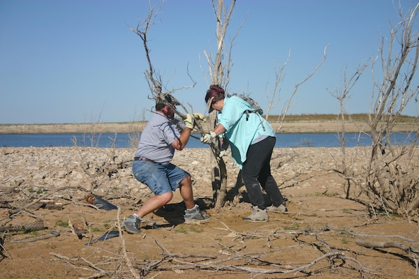 JOHN MARTIN RESERVOIR, Colo., -- Volunteers work to remove invasive trees on National Public Lands Day, Sept. 24, 2016. The work improved nesting habitat for the endangered interior least tern and threatened piping plover birds which like to nest at the reservoir.