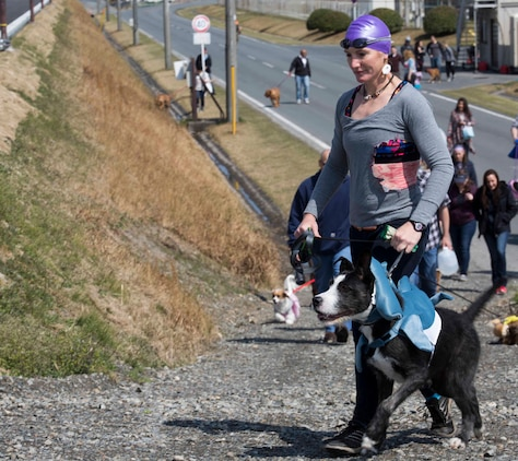 U.S. Marine Corps Capt. Kassia Regehr walks her dog, Ozzy, at the Active-Duty Fund Drive Dog Parade at Marine Corps Air Station Iwakuni, Japan, April 1, 2017. The Navy-Marine Corps Relief Society held the event to bring the community together and increased awareness of its fund drive. Eleven dog owners registered for the event and walked from Penny Lake to the harbor gate and back. They also participated in a dog-costume contest. (U.S. Marine Corps photo by Lance Cpl. Gabriela Garcia-Herrera)