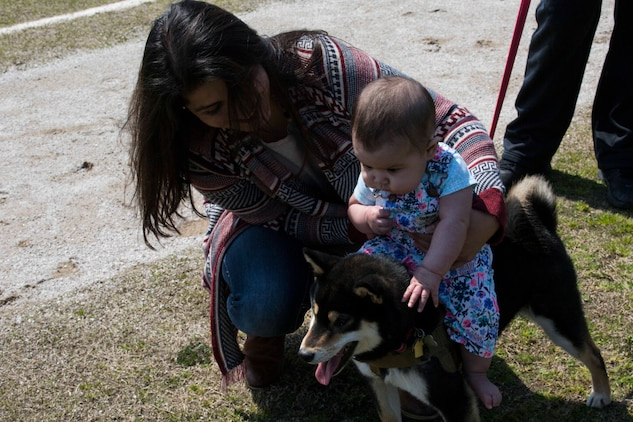 Veronica Kerrigan, American Red Cross field Coordinator, holds Emi Vazquez as she sits on her dog at the Active-Duty Fund Drive Dog Parade at Marine Corps Air Station Iwakuni, Japan, April 1, 2017. The Navy-Marine Corps Relief Society held the event to bring the community together and increased awareness of its fund drive. Eleven dog owners registered for the event and walked from Penny Lake to the harbor gate and back. They also participated in a dog-costume contest. (U.S. Marine Corps photo by Lance Cpl. Gabriela Garcia-Herrera)