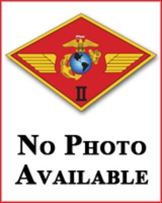 Lieutenant Colonel Shayne M Frey Marine Aircraft Group 29 Mag