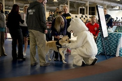 As crowds begin to gather for the Sexual Assault Prevention and Response Walk-A-Lap event, March 5 at the Elmendorf Fitness center, Jay the Bear greets Sawyer, a service dog trained to provide comfort to sexual assault victims. Jay walked his laps with his canine companion.