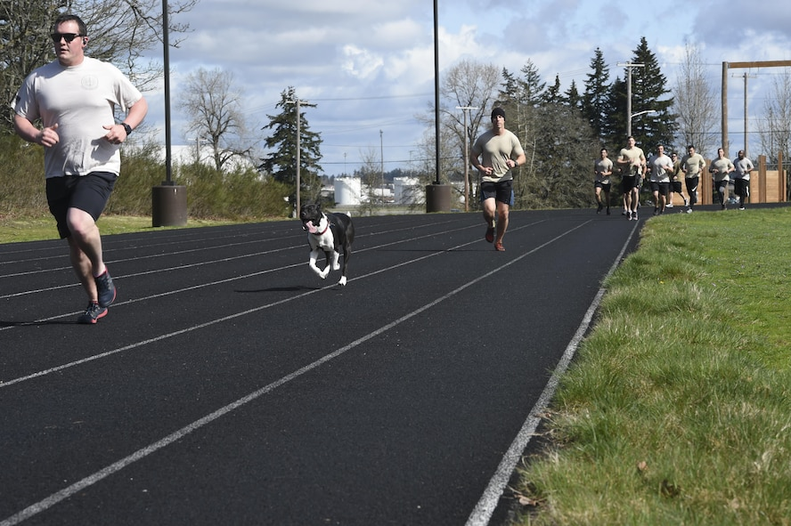 Members and pets of the 1st Air Support Operations Group, 194th ASOG, 62nd Airlift Wing and Joint Base Lewis- McChord, Wash., run and walk on the McChord Field outdoor track, March 31, 2017, to honor TACP Airmen who have died in combat or training  and to raise money and awareness for the Tactical Air Control Party Association. The goal of the annual 24-hour run is to give back to the families and this year the TACP-A collected more than $6,000 in donations. (Air Force Photo/ Staff Sgt. Naomi Shipley)