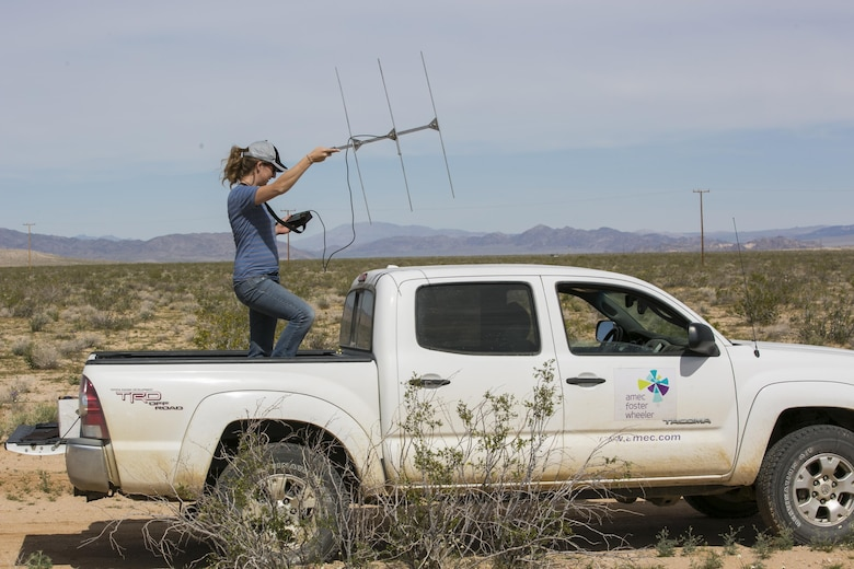 Mary Lane Poe, biologist, Natural Resources and Environmental Affairs, tracks released desert tortoises using directional antennas and receivers at Sand Hill training area aboard Marine Corps Air Ground Combat Center, Twentynine Palms, Calif., April 5, 2017. The release of 50 juvenile tortoises from the Tortoise Research and Captive Rearing Site occurred in March. The program was designed to find effective ways to increase the population of the tortoises on and around the installation as well as solve potential problems that wild tortoises face today. (U.S. Marine Corps photo by Lance Cpl. Dave Flores)