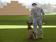 U.S. Air Force Staff Sgt. Carlos Orantes, 355th Security Forces Squadron military working dog trainer, conducts proficiency training with Ootter, 355th SFS MWD, at Davis-Monthan Air Force Base, Ariz., March 16, 2017. The 355th SFS received a new training facility that has provided an increase in the MWD handlers' ability to conduct required training at a consistent tempo. (U.S. Air Force photo by Airman 1st Class Giovanni Sims)