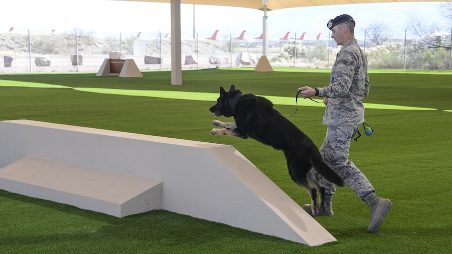 U.S. Air Force Senior Airman Tanner McKinley, 355th Security Forces Squadron military working dog handler, trains with Lana, 355th MWD, at Davis-Monthan Air Force Base, Ariz., March 16, 2017. The 355th SFS mission is to protect, defend and fight to enable Air Force joint and coalition mission success. (U.S. Air Force photo by Airman 1st Class Giovanni Sims)