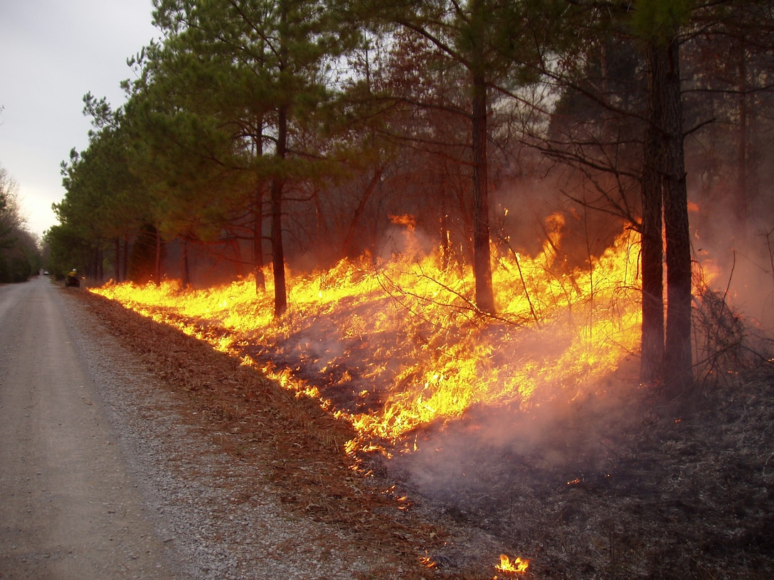 This prescribed fire shown at Arnold Air Force Base is a necessary process that promotes new growth by removing dead vegetation and suppressing woody species that would eventually grow into a forest in the absence of fire. (AEDC photo)