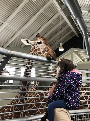Airman 1st Class Marissa Pederson, 50 SFS entry controller, spends time with her mentee feeding giraffes during the Good Grief Camp program at the Cheyenne Mountain Zoo, Saturday, April 1, 2017.  During the two-day event, children who lost family members were paired with mentors to establish communication, maintain a military connection and to let them understand they are not alone. (Courtesy photo)