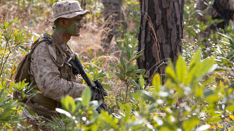Pfc. Erich B. Vlaar conducts a foot patrol during a scout sniper screener at Marine Corps Base Camp Lejeune, N.C., April 3, 2017. The screener tested the Marines' ability to accomplish basic infantry tasks to find the most qualified candidates for the Scout Sniper Basic Course. Vlaar is a basic rifleman with 2nd Battalion, 8th Marine Regiment, 2nd Marine Division.