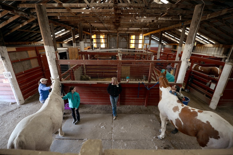 Horses and their owners relax at the Dufresne Riding Club Stables at Minot Air Force Base, N.D., April 11, 2017. The stables help Airmen pursue hobbies and passions that may be difficult to have as a military member. (U.S. Air Force photo/Airman 1st Class Austin M. Thomas)