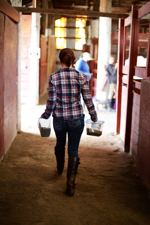 Tori Halbasch, spouse of Senior Airman Nick Halbasch, 5th Operations Support Squadron work master, gets grain for her horse Dante at the Dufresne Riding Club Stables at Minot Air Force Base, N.D., April 11, 2017. The stables were first started in 1972. (U.S. Air Force photo/Airman 1st Class Austin M. Thomas)