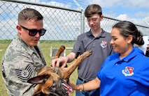 John Jay High School Air Force Junior Reserve Officer Training Corp cadets Jackson Getz and Shadicy Garza pet Delarge, a puppy from the Military Working Dog program held by Tech. Sgt. Nicholas Lewis, an 802nd Security Force Squadron military working dog handler , April 19, 2017 at Joint Base San Antonio-Lackland, Texas. The students toured engine and structural engineering shops at the 433rd Airlift Wing. (U.S. Air Force photo by Tech. Sgt. Carlos J. Trevino) (released)