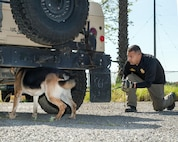 George Negrete from the San Joaquin County Sheriff's Office runs his dog Maximus during the Western State Police Canine Association trials held at Travis Air Force Base, Calif., April 14, 2017. The 2-day event featured competition in bomb and drug detection that stress the importance of control, as well as safety tactics while encountering scenarios that mimic encounters on the street. (U.S. Air Force photo by Louis Briscese)