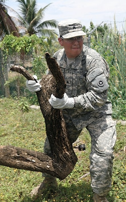 Army Sgt. Alex Navarro, a mechanic with the 452nd Quartermaster Company, disposes of a fallen tree stump at the Liberty Children's Home, during a community relations event held in Ladyville, Belize as part of Beyond the Horizon 2017, April 18, 2017. Service members helped to clear debris from the property and played games with the children. Army photo by Staff Sgt. Fredrick Varney