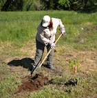 Ann Bedlion, 9th Civil Engineer Squadron natural and cultural resource manager, removes weeds in order to plant a tree April 21, 2017, at Beale Air Force Base, California. The enviromental office capped off Earth Week with the tree planting. (U.S. Air Force photo/Airman 1st Class Tristan D. Viglianco)