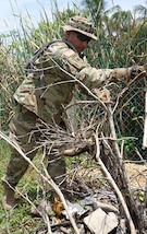 Sgt. 1st Class Jorge Palomo, a targeting non-commissioned officer with the 101st Information Operations Battalion, clears debris from the trees surrounding the houses at Liberty Children's Home April 18, 2017, during a community relations event held in Ladyville, Belize as part of Beyond the Horizon 2017.  BTH 2017 is a partnership exercise between the Government of Belize and U.S. Southern Command that will provide three free medical service events and five construction projects throughout the country of Belize from March 25 until June 17. (U.S. Army Photo by Staff Sgt. Fredrick Varney, 131st Mobile Public Affairs Detachment)