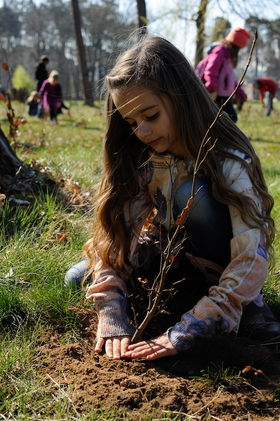 Celeste Bronson, daughter of Maj. Hyrum Bronson, United States Transportation Command flight surgeon, presses dirt into a planted tree on Ramstein Air Base, Germany, April 21, 2017. Kaiserslautern Military Community students, 86th Civil Engineer Group Airmen and federal forest departments celebrated Earth Day by planting more than 1,500 trees on base. (U.S. Air Force photo by Airman 1st Class Savannah L. Waters)