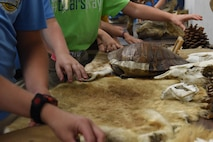 Children from Legacy Elementary School feel animal pelts, skulls and shells of animals that exist in the local ecosystem during an Earth Day field trip at Barksdale Air Force Base, La., April 21, 2017. Barksdale East Reservation contains a wide variety of animals like alligators, hornets, beavers, and falcons. (U.S. Air Force photo/Senior Airman Luke Hill)