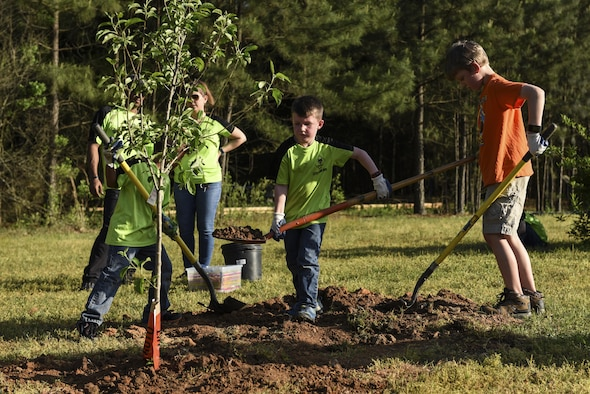 Cub Scouts Pack 170 plant a fruit tree April 19, 2017, near the Jacksonville Lighthouse Charter School: Flightline Upper Academy on Little Rock Air Force Base, Ark. Installation leadership continually partners with the community to maintain and plant its growing population of urban trees. (U.S. Air Force photo by Senior Airman Mercedes Taylor)