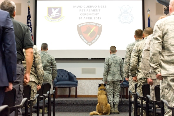 At his retirement ceremony, Military Working Dog Cuervo, N622, assigned to the 436th Airlift Wing, 436th Security Forces Squadron, sits next to his MWD handler Senior Airman Alexander Cormier, April 14, 2017, on Dover Air Force Base, Del. MWD Cuervo retired from active duty after serving more than seven years. (U.S. Air Force photo by Roland Balik)