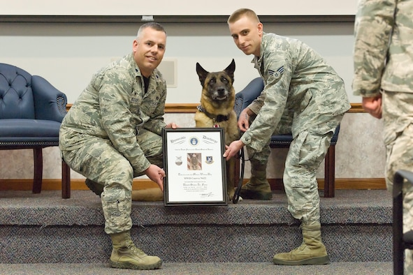 Lt. Col. Dana Metzger, 436th Security Forces Squadron commander and Senior Airman Alexander Cormier, 436th SFS Military Working Dog handler, present MWD Cuervo, N622, with his Honorable Discharge from active duty April 14, 2017, on Dover Air Force Base, Del. Cuervo was also presented the U.S. Air Force Meritorious Service Medal and Certificate of Retirement during the ceremony. (U.S. Air Force photo by Roland Balik)