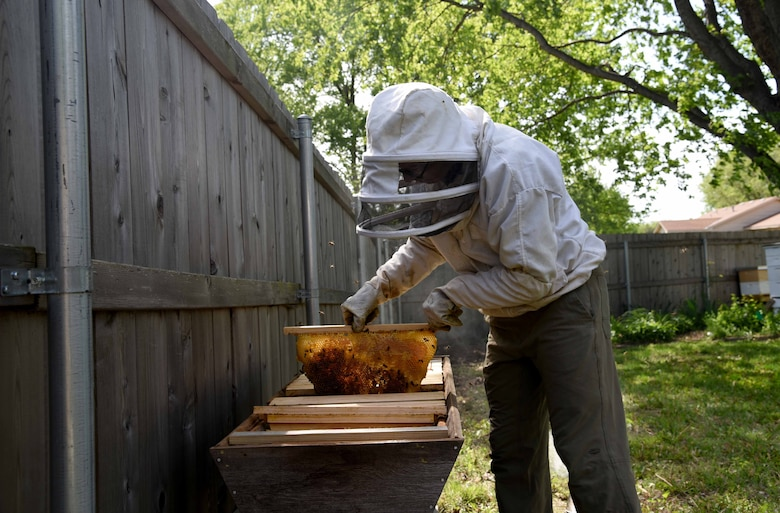 Tech. Sgt. Garrett Wright, 22nd Operations Support Squadron Survival Evasion Resistance and Escape and Personnel Recovery specialist, inspects one of his honeybee hives April 24, 2017, in Derby, Kan. Wright started beekeeping last year and now has five different hives in his backyard. (U.S. Air Force photo/Airman 1st Class Erin McClellan)