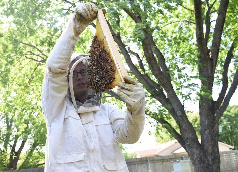 Tech. Sgt. Garrett Wright, 22nd Operations Support Squadron Survival Evasion Resistance and Escape and Personnel Recovery specialist, inspects one of his honeybee hives April 24, 2017, in Derby, Kan. Wright, who is an environmental science major, is interested in the impact honeybees and other insects have on the environment. (U.S. Air Force photo/Airman 1st Class Erin McClellan)