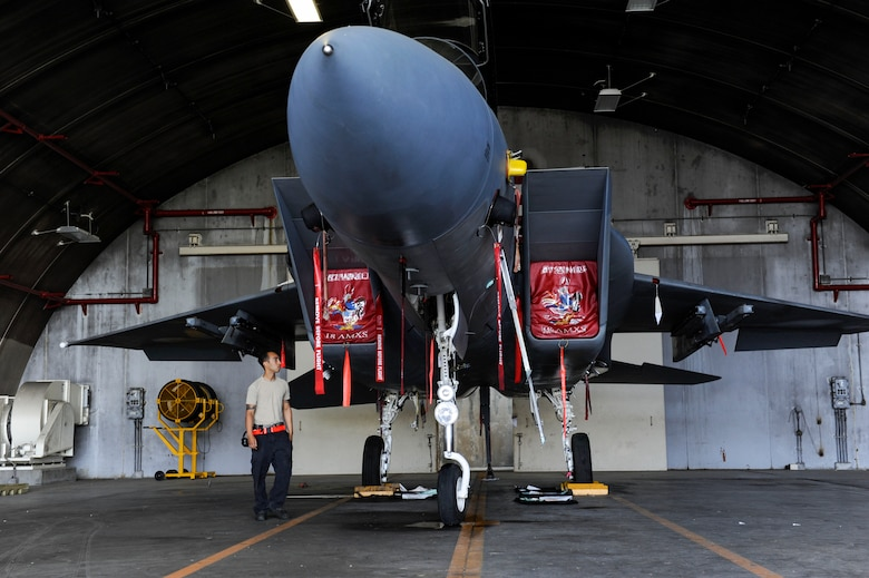 U.S. Air Force Senior Airman Devon Moore, 67th Aircraft Maintenance Unit crew chief, performs pre-training checks on an F-15 Eagle April 24, 2017, at Kadena Air Base, Japan. Crew chiefs undergo frequent training to maintain their job proficiency. (U.S. Air Force photo by Senior Airman Lynette M. Rolen)
