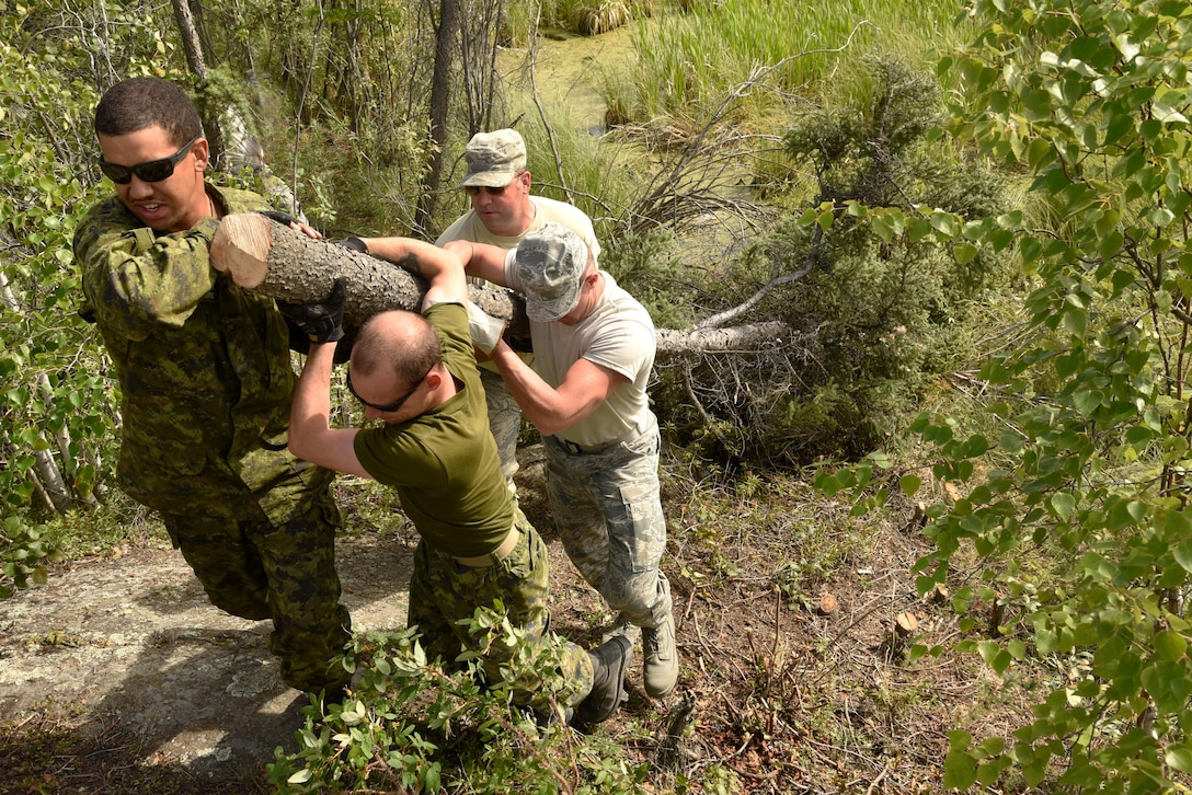 Members of Oregon Air National Guard's 142nd Fighter Wing Civil Engineer Squadron and Canadian Armed Forces (CAF) work together to clear cut trees and other materials to help create a pathway for the expanded Niven Lake Trail, July 24, 2017, Yellowknife, Northwest Territories, Canada. The Oregon Airmen are also collaborating with Canadian Armed Forces members from Cold Lake, Alberta, who are also deployed to Yellowknife for similar training. (U.S. Air National Guard photo/Master Sgt. John Hughel, 142nd Fighter Wing Public Affairs)