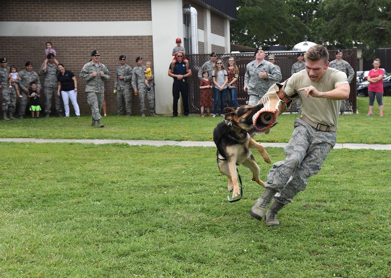 Staff Sgt. Jordan Leiter, 81st Security Forces Squadron military working dog handler, and Gamma, 81st SFS MWD, participate in a MWD demonstration during a family ice cream social at the 81st SFS building July 27, 2017, on Keesler Air Force Base, Miss. The event, hosted by the 81st SFS Defenders Council and Key Spouses, also consisted of a combat arms weapons display and ice cream. (U.S. Air Force photo by Kemberly Groue)