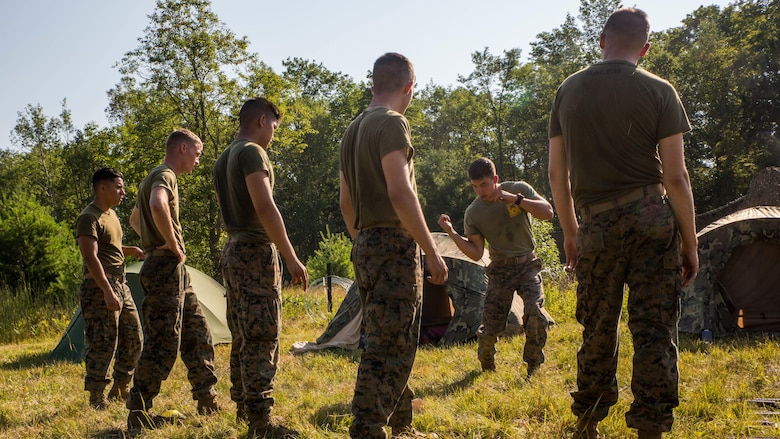 U.S. Marine Sgt. Kevin Eskins, a combat engineer with 4th Combat Engineers Battalion, 4th Marine Division, Marine Forces Reserve, demonstrates a horizontal hammer fist during a Marine Corps Martial Art Program course at Camp Grayling, Michigan, during exercise Northern Strike 2017, July 31, 2017. Northern Strike 2017 brought together Reserve Marine from across the country to provide realistic combined arms trainings to cover a spectrum of combat scenarios.